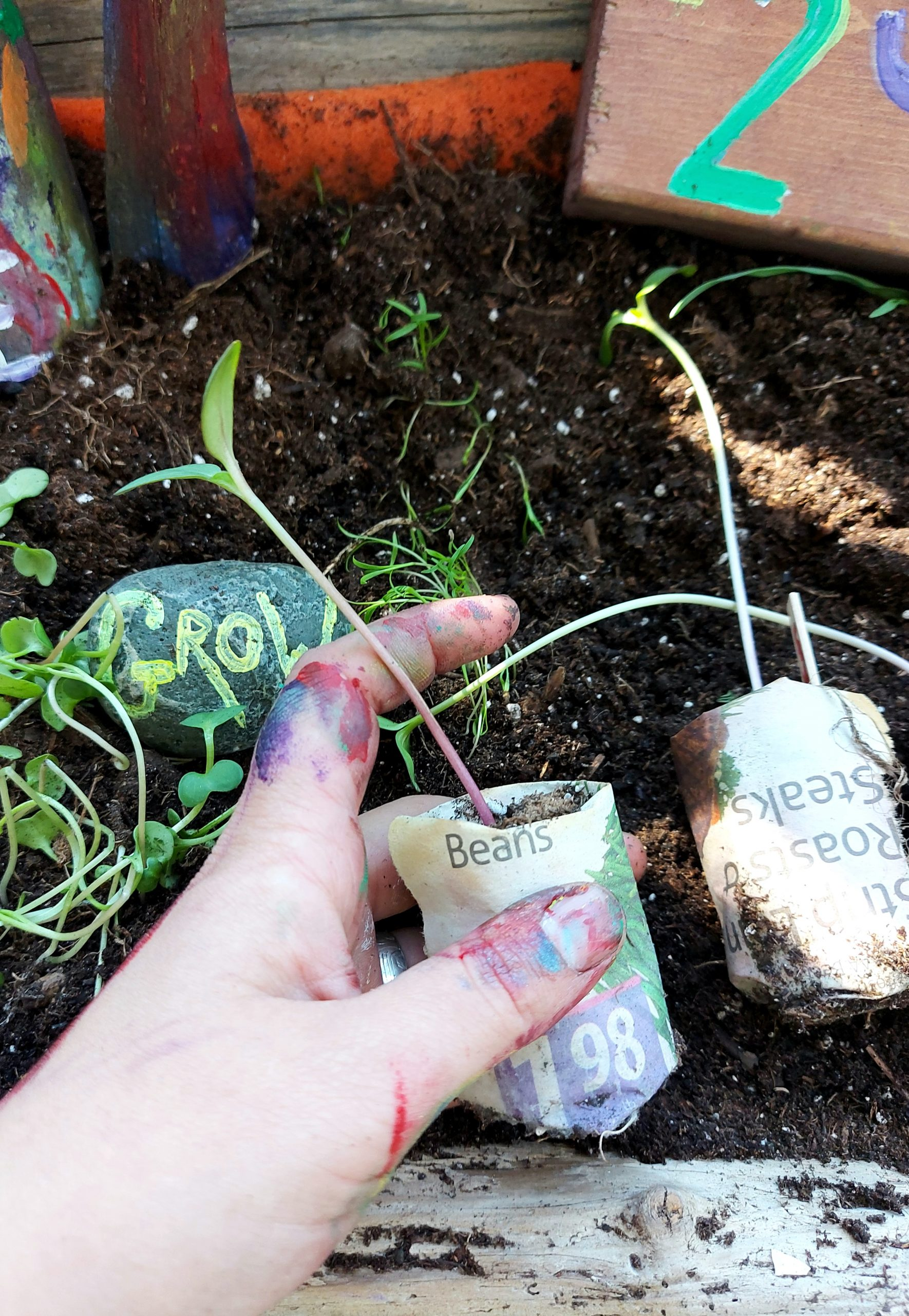 How to make newspaper seed starters in a pinch