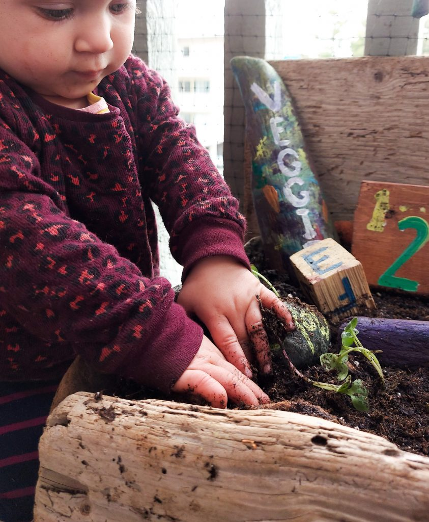 baby playing in driftwood planter