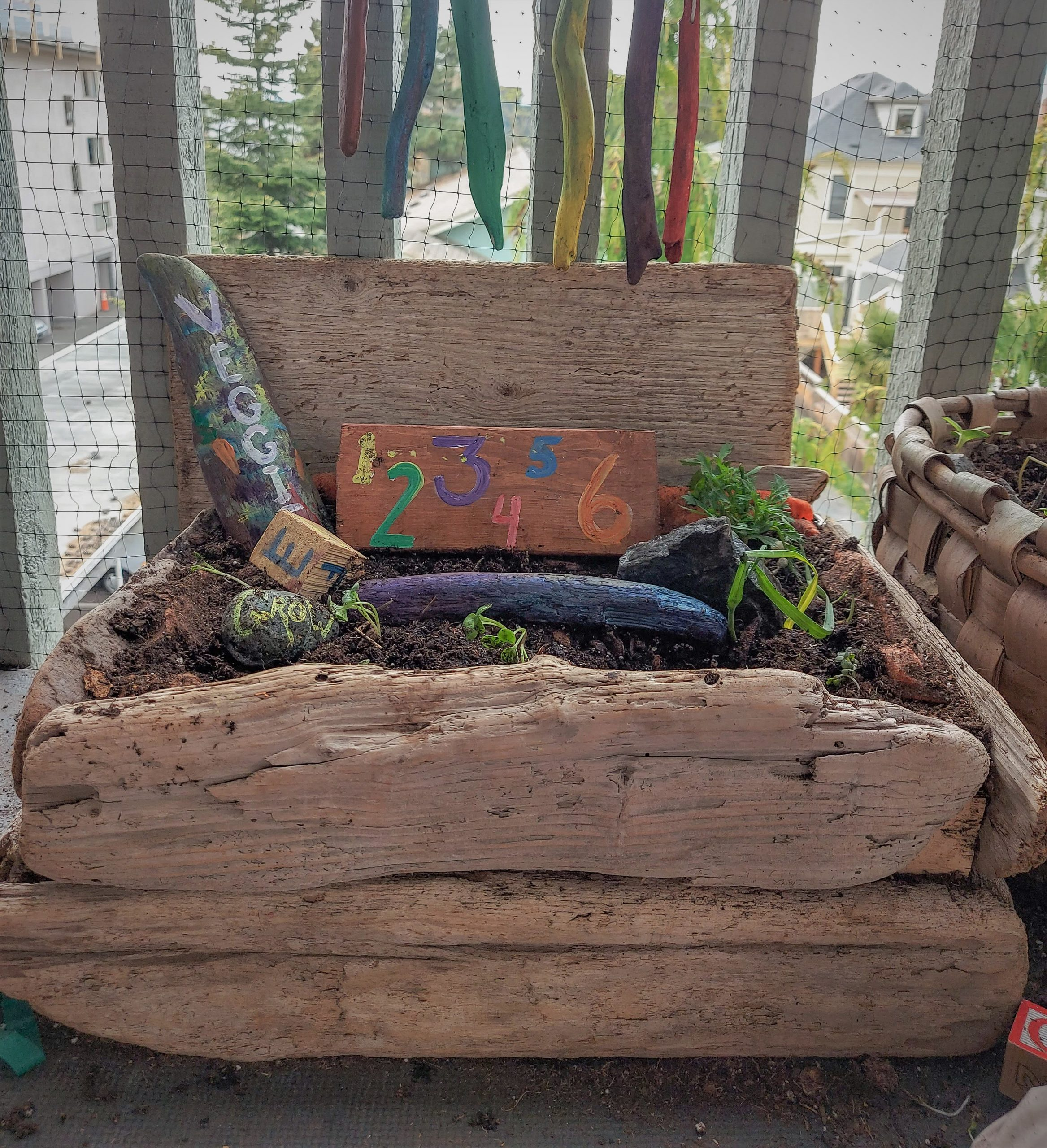 How to make a driftwood planter, making a planter for the kids