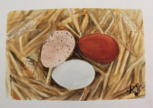 watercolor painting of chicken eggs on a bed of hay