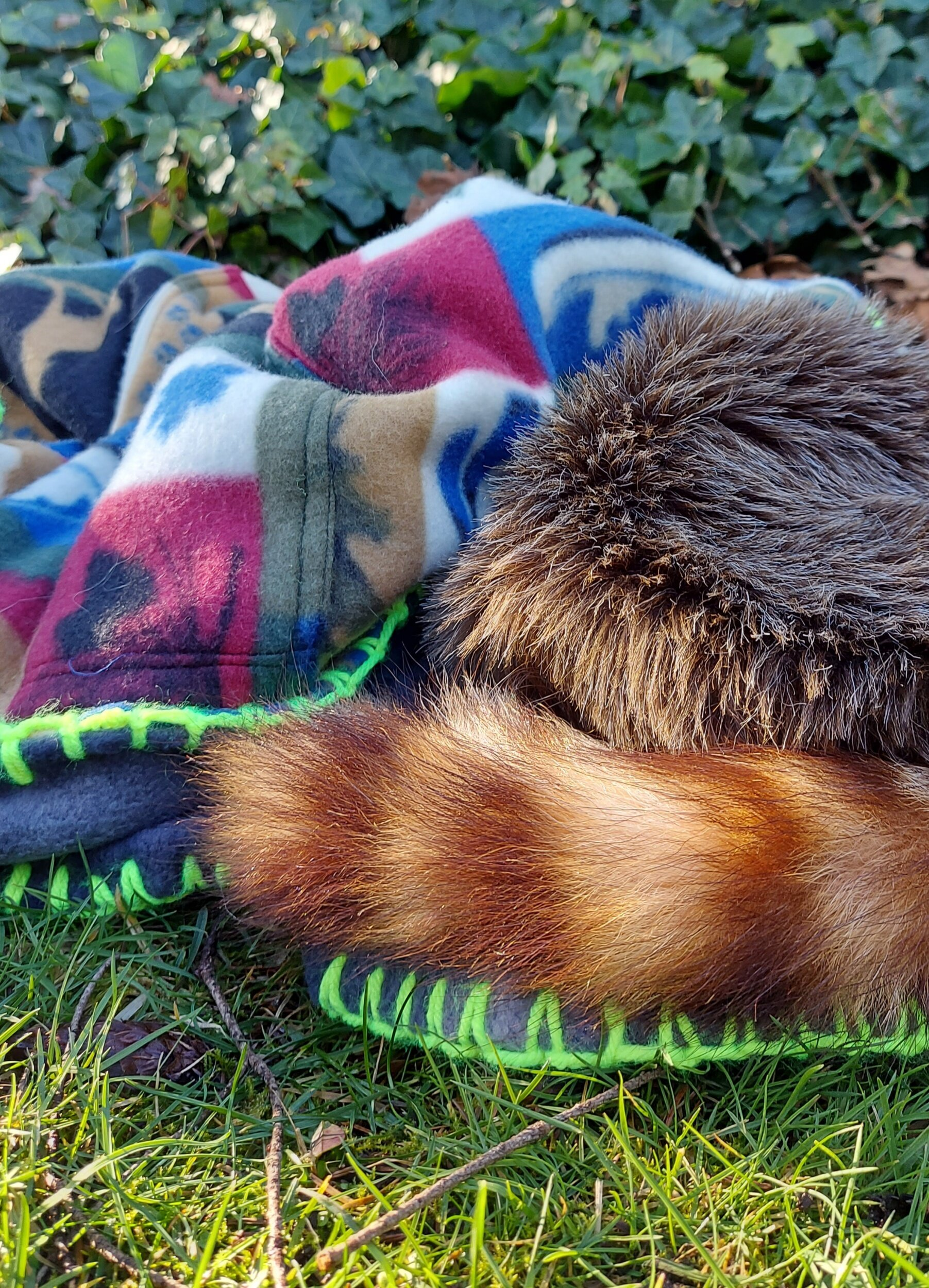 adventure blanket piled up on the grass with raccoon skin cap on top